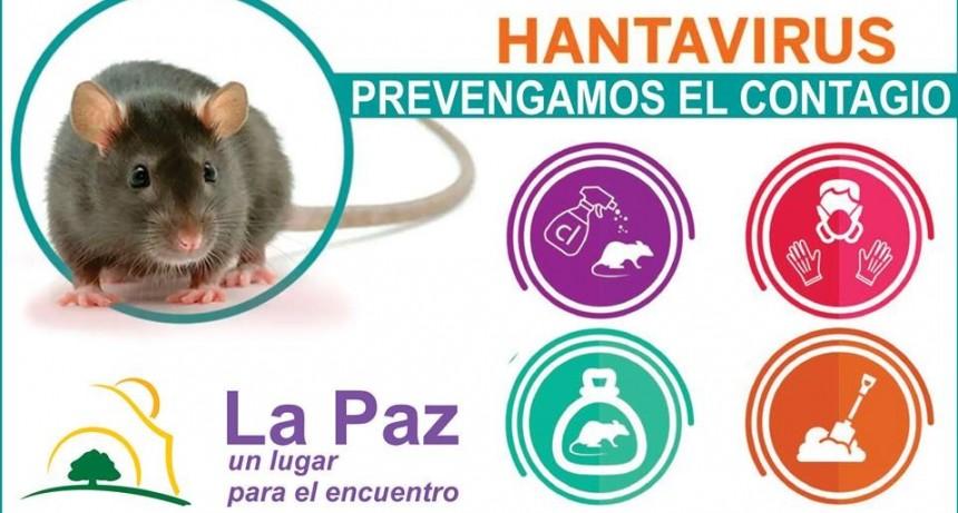 El Municipio desarrolla diferentes medidas para prevenir el HANTAVIRUS