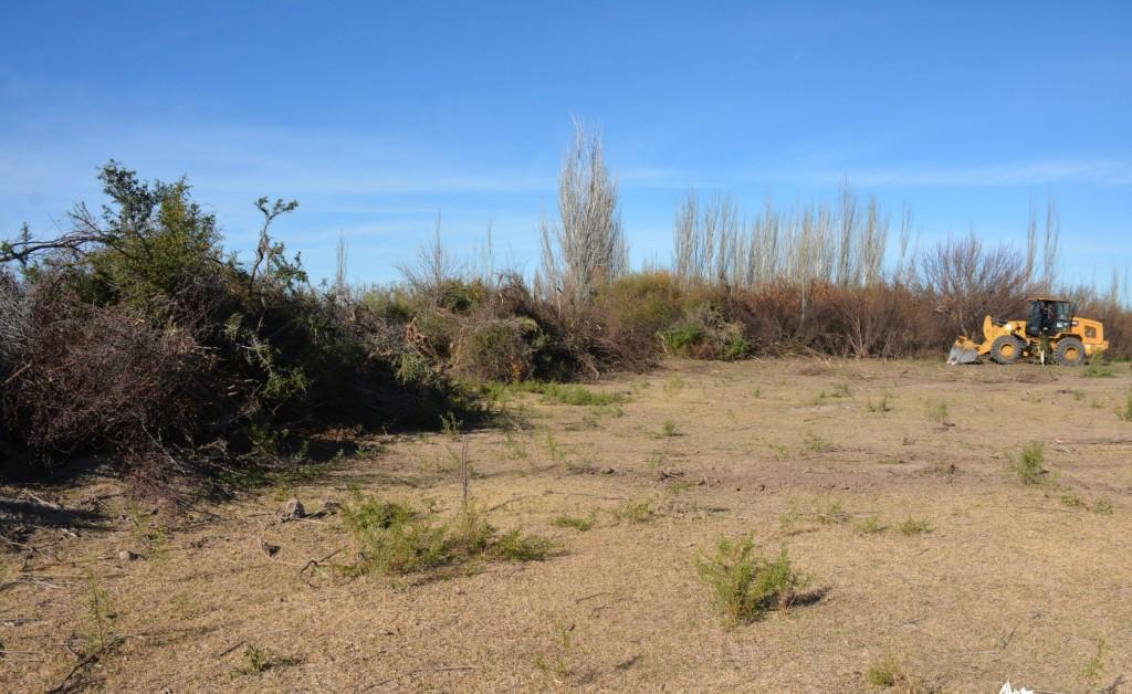Se realizó un operativo de mantenimiento de terrenos en La Menta y Chacritas