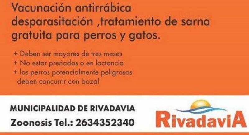 Rivadavia: Vacunación de perros y gatos